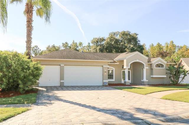 5324 Merkin Pl, New Port Richey, FL 34655 (MLS #W7838174) :: The Hustle and Heart Group