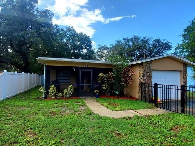 700 Butler Street, Safety Harbor, FL 34695 (MLS #W7838177) :: EXIT Gulf Coast Realty