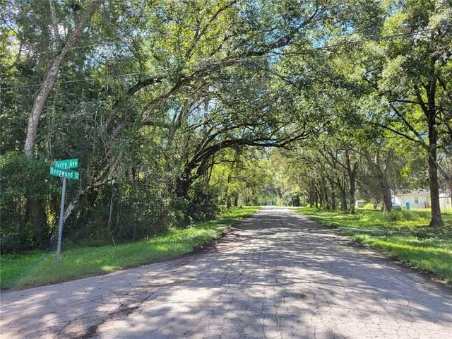 Ferry Avenue, Brooksville, FL 34604 (MLS #W7838187) :: Griffin Group