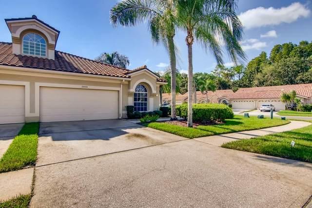 3898 Timber Ridge Court, Palm Harbor, FL 34685 (MLS #W7838199) :: Team Turner