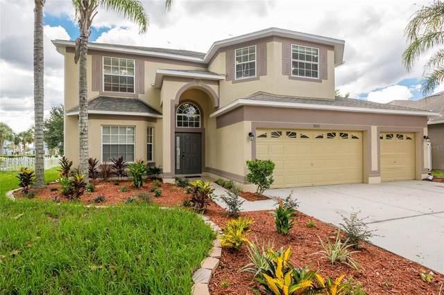 3121 Chessington Drive, Land O Lakes, FL 34638 (MLS #W7838203) :: Stiver Firth International