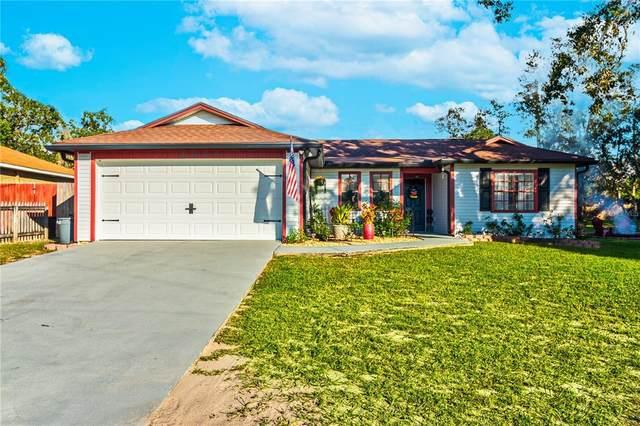 3200 Beaver Avenue, Spring Hill, FL 34609 (MLS #W7838212) :: Dalton Wade Real Estate Group