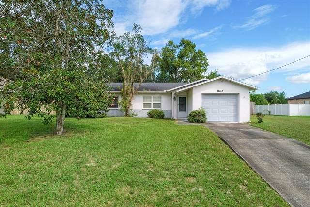 14133 Indigo Street, Spring Hill, FL 34609 (MLS #W7838215) :: Carmena and Associates Realty Group