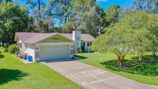 8490 Dorsey Street, Spring Hill, FL 34608 (MLS #W7838220) :: Carmena and Associates Realty Group
