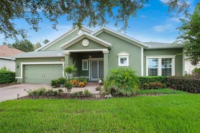 19878 Tattnall Way, Brooksville, FL 34601 (MLS #W7838233) :: Lockhart & Walseth Team, Realtors