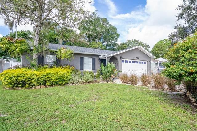 5031 Meadowlark Lane, New Port Richey, FL 34653 (MLS #W7838238) :: Southern Associates Realty LLC