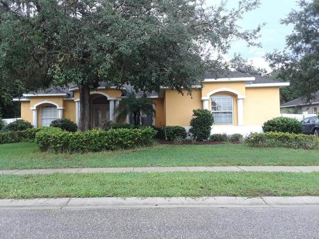 New Port Richey, FL 34654 :: The Hustle and Heart Group