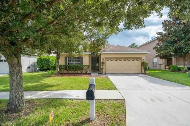 13169 Mandalay Place, Spring Hill, FL 34609 (MLS #W7838255) :: Dalton Wade Real Estate Group