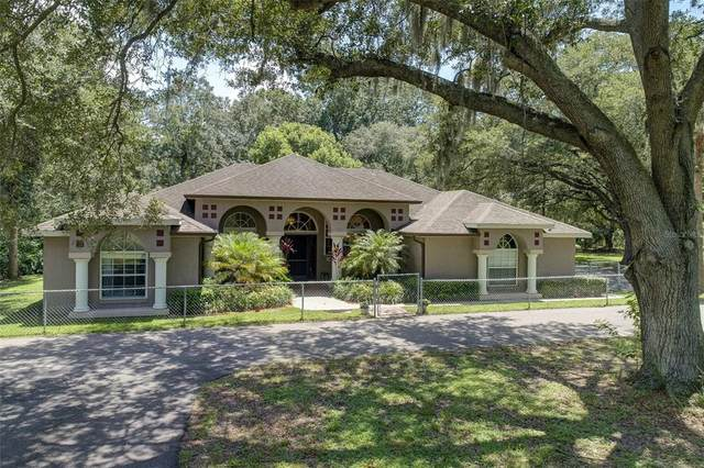 9551 Riverview Drive, Riverview, FL 33578 (MLS #W7838264) :: Cartwright Realty