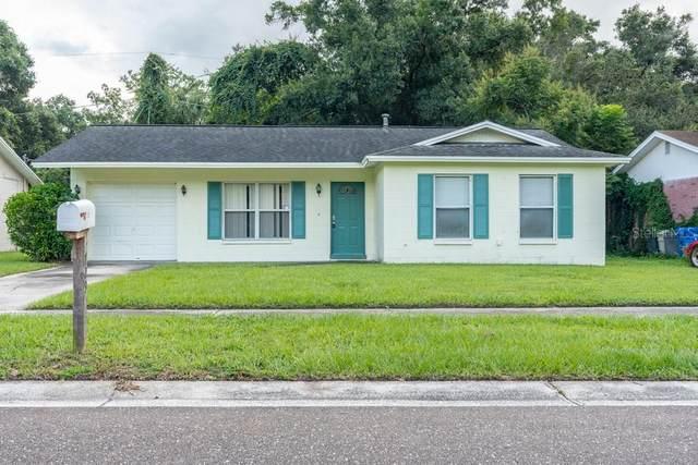 729 Holly Terrace, Brandon, FL 33511 (MLS #W7838267) :: Expert Advisors Group