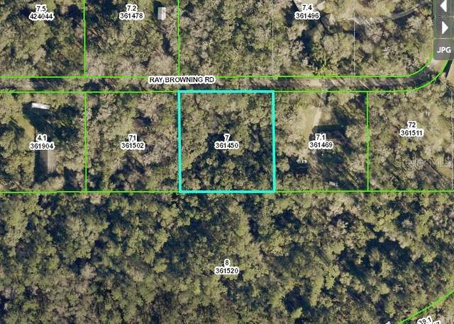 Ray Browning Road, Brooksville, FL 34601 (MLS #W7838268) :: Your Florida House Team