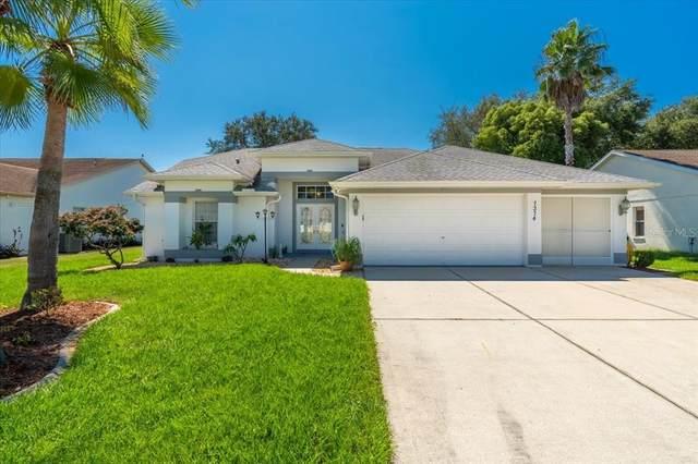 7374 Botanical Drive, Spring Hill, FL 34607 (MLS #W7838301) :: Pepine Realty