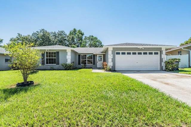 3005 Sarah Drive, Clearwater, FL 33759 (MLS #W7838310) :: Future Home Realty