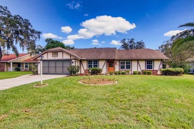 9347 Horizon Drive, Spring Hill, FL 34608 (MLS #W7838314) :: Pepine Realty