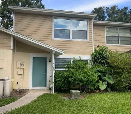 15627 Morning Drive, Lutz, FL 33559 (MLS #W7838324) :: Team Bohannon