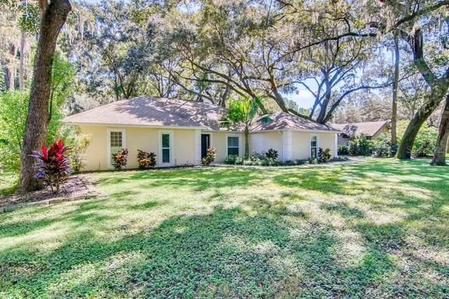 16103 Chancery Place, Tampa, FL 33613 (MLS #W7838326) :: Future Home Realty