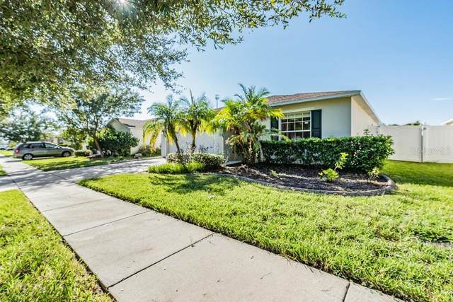 31118 Mandolin Cay Avenue, Zephyrhills, FL 33543 (MLS #W7838332) :: CARE - Calhoun & Associates Real Estate