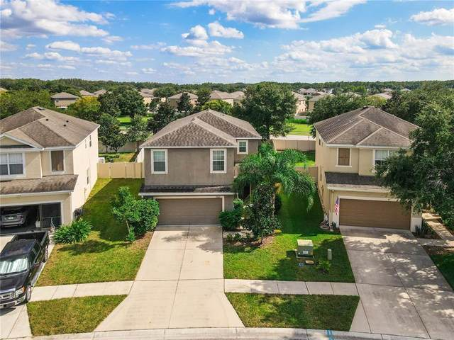 13807 Crater Circle, Hudson, FL 34669 (MLS #W7838338) :: Global Properties Realty & Investments