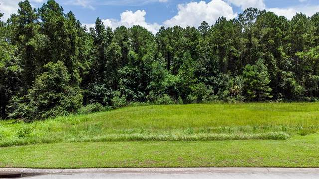 5062 Elm Leaf Drive, Brooksville, FL 34601 (MLS #W7838353) :: The Light Team