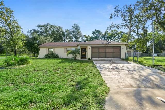 1416 Godfrey Avenue, Spring Hill, FL 34609 (MLS #W7838357) :: Gate Arty & the Group - Keller Williams Realty Smart