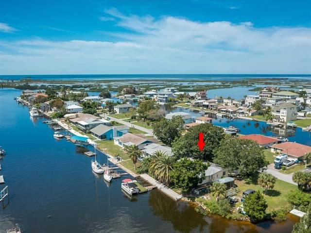 3378 Minnow Creek Drive, Hernando Beach, FL 34607 (MLS #W7838381) :: Blue Chip International Realty