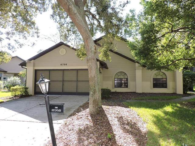 6706 Oak Cluster Circle, Spring Hill, FL 34606 (MLS #W7838402) :: Wolves Realty