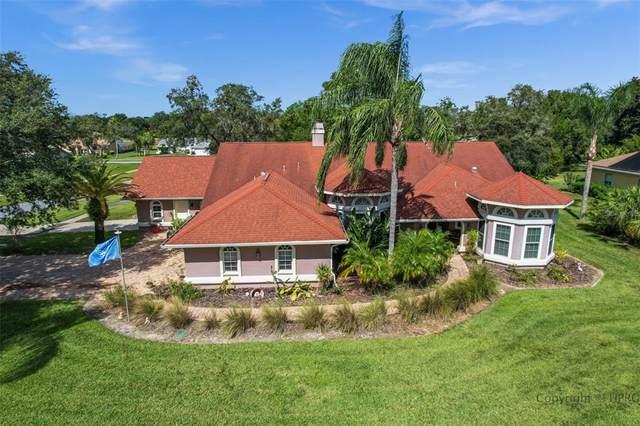 352 Triana Street, Spring Hill, FL 34609 (MLS #W7838409) :: Keller Williams Realty Select