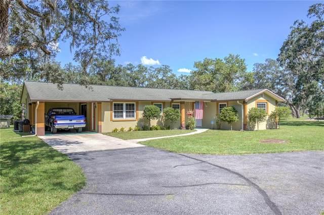 10405 Osceola Drive, New Port Richey, FL 34654 (MLS #W7838440) :: Everlane Realty