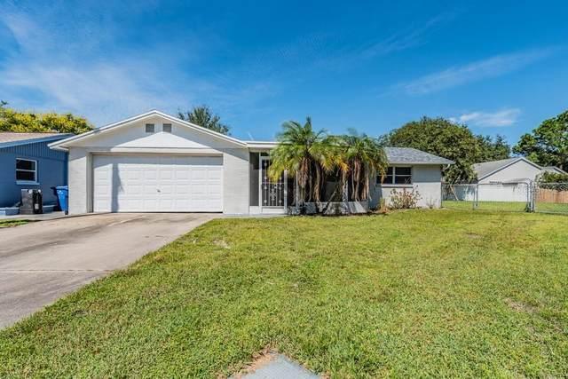 7441 Abington Avenue, New Port Richey, FL 34655 (MLS #W7838466) :: Expert Advisors Group