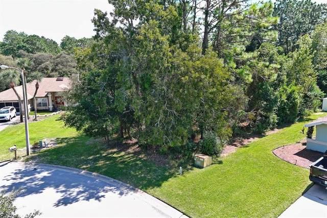 0 Doxsey Hill Circle, Spring Hill, FL 34609 (MLS #W7838494) :: Orlando Homes Finder Team