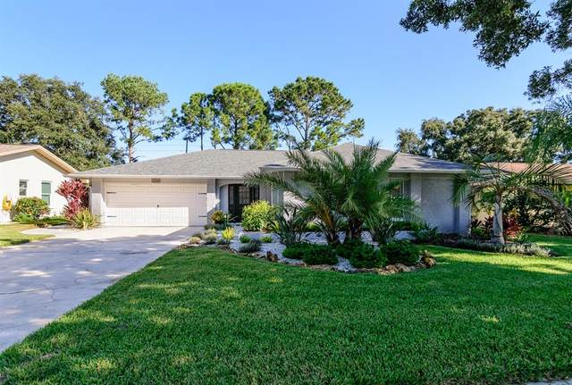 2848 Thistle Court N, Palm Harbor, FL 34684 (MLS #W7838568) :: The Nathan Bangs Group