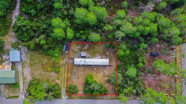 8548 Lilymoor Drive, New Port Richey, FL 34654 (MLS #W7838584) :: Bustamante Real Estate