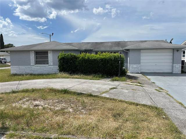 11201 Kapok Avenue, Port Richey, FL 34668 (MLS #W7838647) :: Keller Williams Realty Select