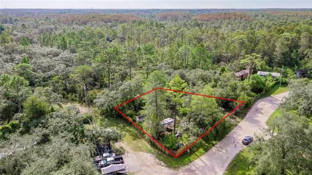 0 Ellis, New Port Richey, FL 34654 (MLS #W7838655) :: Bustamante Real Estate