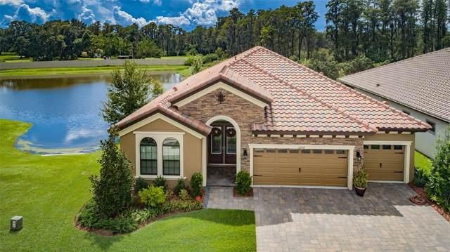 22018 Pristine Lake Boulevard, Land O Lakes, FL 34637 (MLS #W7838689) :: Cartwright Realty
