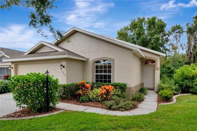 10032 Brookdale Drive, New Port Richey, FL 34655 (MLS #W7838691) :: Lockhart & Walseth Team, Realtors
