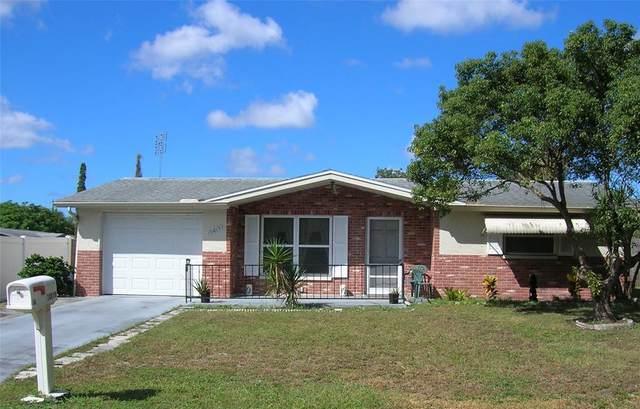 10819 Maplewood Avenue, Port Richey, FL 34668 (MLS #W7838717) :: Keller Williams Realty Select