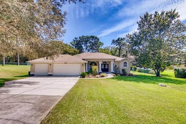 18709 Bascomb Lane, Hudson, FL 34667 (MLS #W7838743) :: Orlando Homes Finder Team