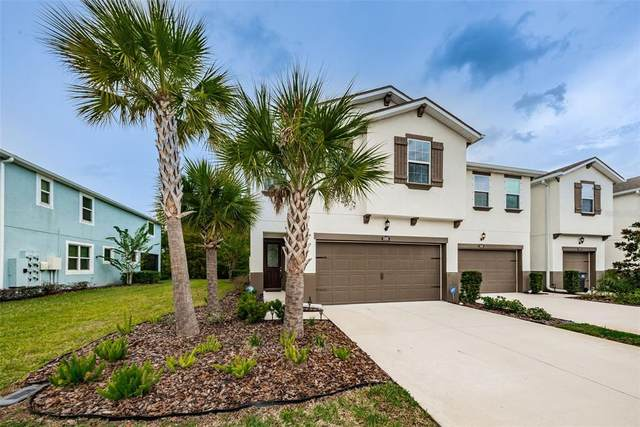 17826 Althea Blue Place, Lutz, FL 33558 (MLS #W7838754) :: McConnell and Associates