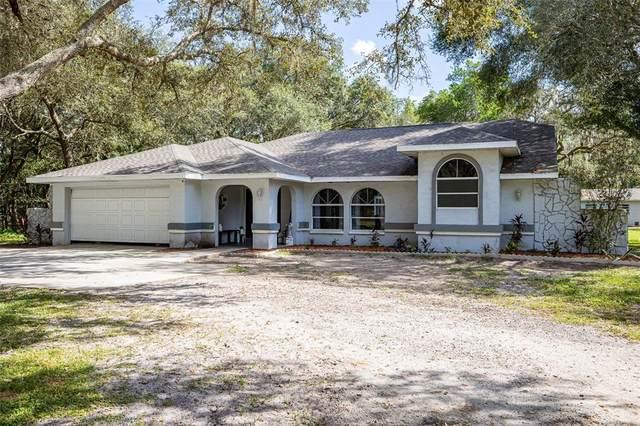 18232 Ozark Drive, Hudson, FL 34667 (MLS #W7838767) :: The Nathan Bangs Group