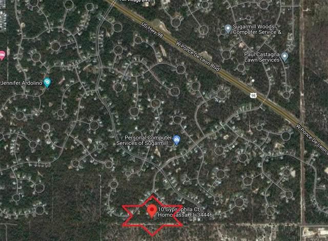 10 Gypsophila Court, Homosassa, FL 34446 (MLS #W7838773) :: Global Properties Realty & Investments