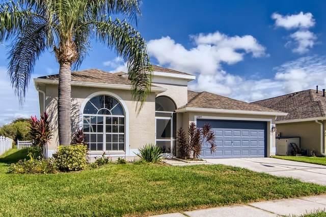 1247 Vinetree Drive, Brandon, FL 33510 (MLS #W7838785) :: Lockhart & Walseth Team, Realtors