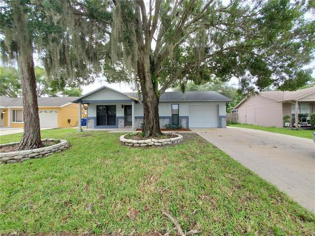 7336 Humboldt Avenue, New Port Richey, FL 34655 (MLS #W7838792) :: Expert Advisors Group