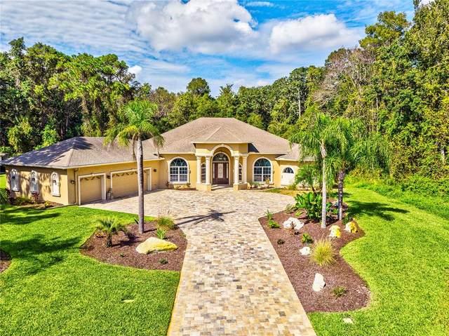 4477 Lake In The Woods Drive, Spring Hill, FL 34607 (MLS #W7838796) :: The Heidi Schrock Team