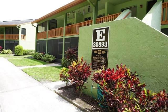 20893 Haulover Cove E5, Lutz, FL 33558 (MLS #W7838829) :: Future Home Realty