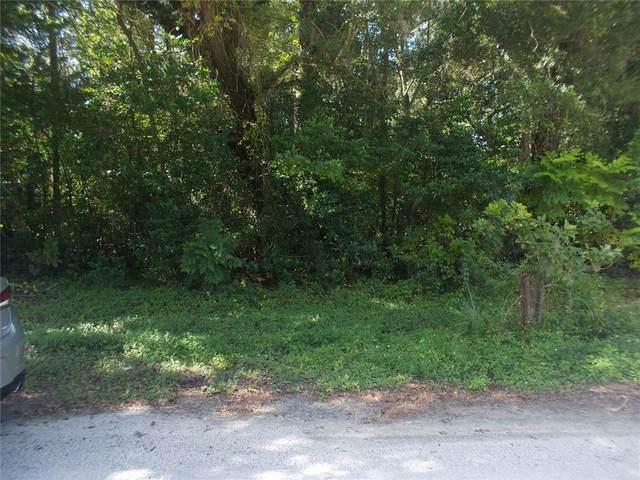 8607 Broad Street, New Port Richey, FL 34654 (MLS #W7838839) :: Everlane Realty