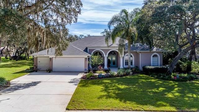 18700 Autumn Lake Boulevard, Hudson, FL 34667 (MLS #W7838840) :: Orlando Homes Finder Team
