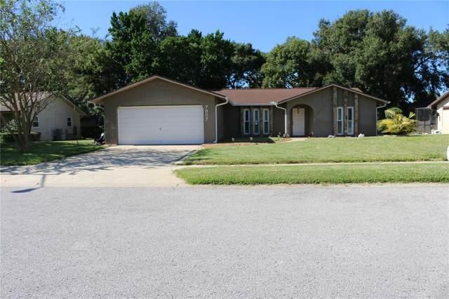 Hudson, FL 34667 :: Everlane Realty