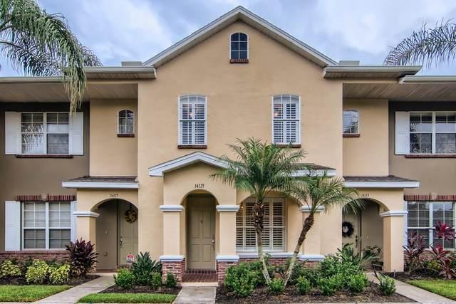 14115 Stowbridge Avenue, Tampa, FL 33626 (MLS #W7838870) :: Orlando Homes Finder Team