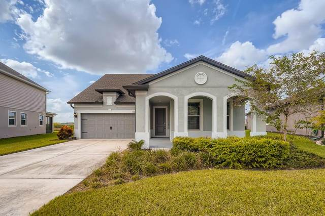 8214 Olive Brook Drive, Wesley Chapel, FL 33545 (MLS #W7838872) :: Bustamante Real Estate